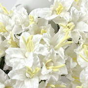 Small White Mulberry Paper Lilies
