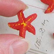 Mini Resin Starfish - Red