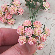 Tiny Paper Roses - Pink Cream Variegated*